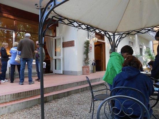 Hotel David: Jardín