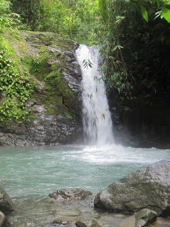Uvita Waterfall: Waterfall