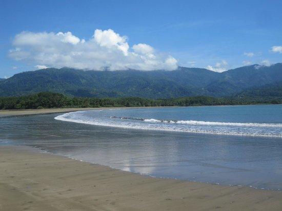 Parque Nacional Marino Ballena: Bahia Ballena