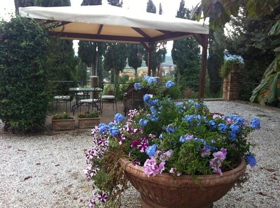 Villa il Poggio : beautiful grounds