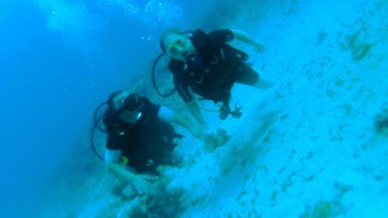 Dive Shop Mexico : Loved it...