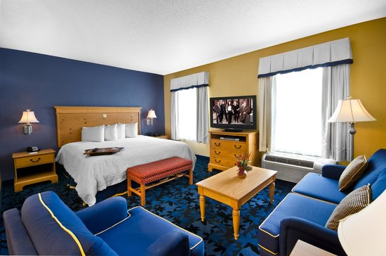 Hampton Inn & Suites Jacksonville South-St. Johns Town Center Area: Studio Suite