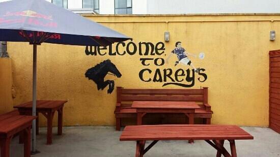 Careys Tavern: beer garden