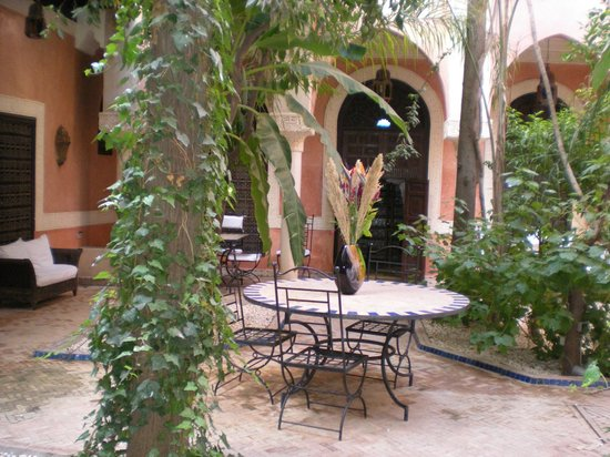 Riad le Perroquet Bleu : Binnentuin waar je ook ontbijt