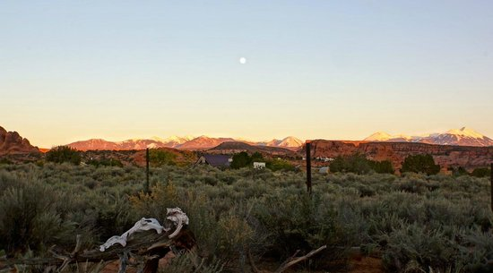 Desert Hills Bed and Breakfast: view from the hot tub
