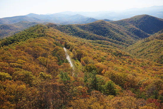 Wirginia: The George Washington National Forest combines with the Jefferson National Forest to form one of
