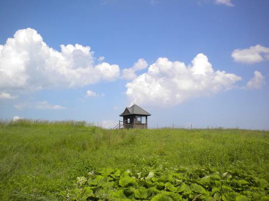Tawadaira: 牧草地とハウス