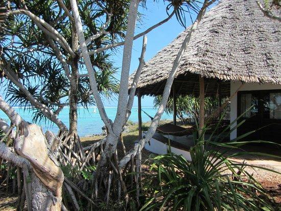 Matemwe Lodge, Asilia Africa : Home