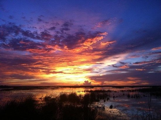 Fort Lauderdale Airboat Adventure: Check out our new 1 hour Sunset tour
