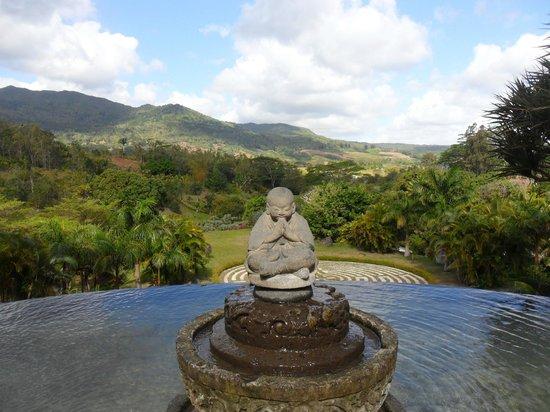 Lakaz Chamarel Exclusive Lodge: vue de l'espace yoga
