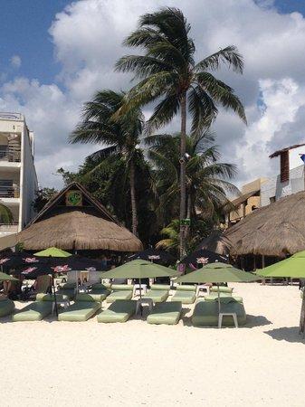Lido Club de Playa: Lido