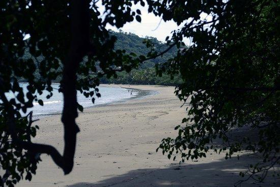 Hotel Bosque del Mar Playa Hermosa: Great Beach