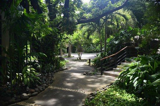 Hotel Bosque del Mar Playa Hermosa: The Gardens are great!