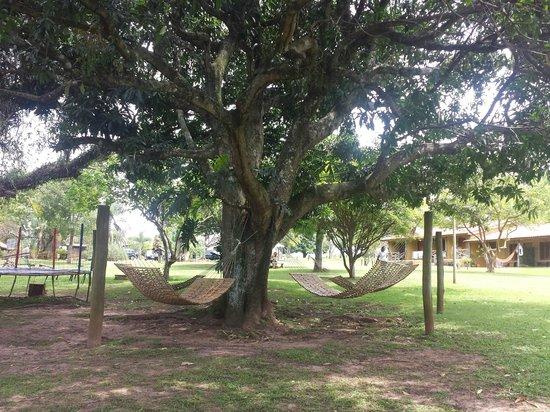 Farm Hotel Jacauna: Vista do Redário