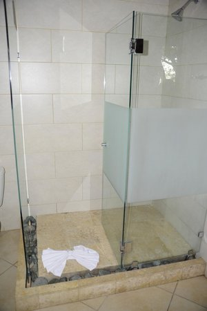 Hotel Bosque del Mar Playa Hermosa: The shower is outstanding