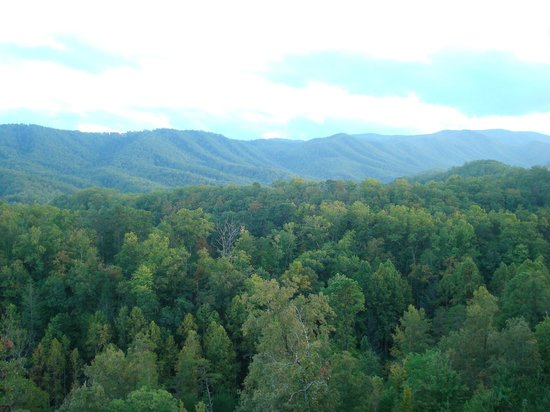 """Sherwood Forest Resort: A view from """"Cloud Nine""""."""
