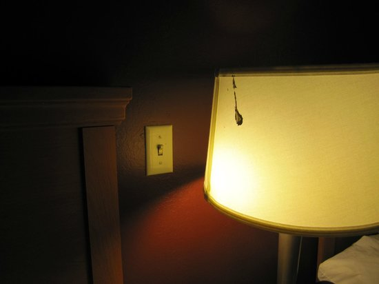 Red Roof Inn Denver: paint on lamp shade
