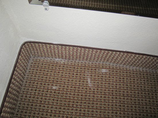 Red Roof Inn Denver: dirty floor