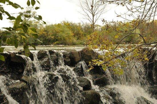 Whitnall Park: Waterfall near golf course
