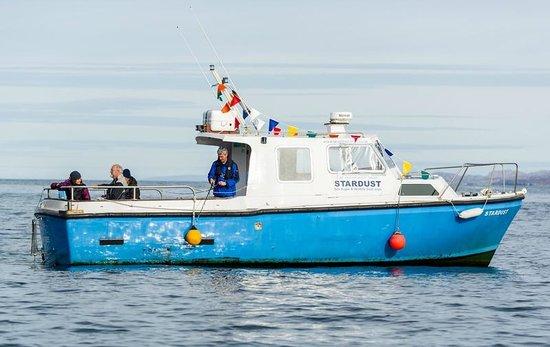 Brigadoon Sea Eagle and Wildlife Boat Trips