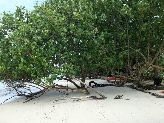 Tenta Nakara: Plaj