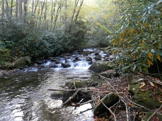 Buffalo Creek Bed and Breakfast: Buffalo Creek runs directly behind their home.