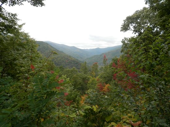 Buffalo Creek Bed and Breakfast: Cherohala Skyway not far from Robbinsville