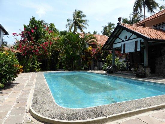 Adam's Homestay: Lekker zwembad