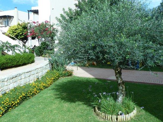 Corinna Mare Studios & Suites: Gardens