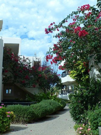 Corinna Mare Studios & Suites : Gardens