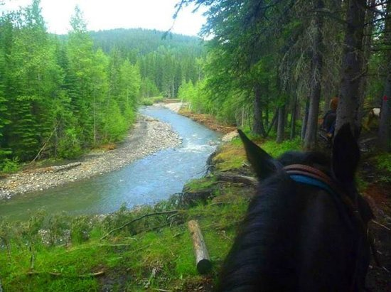Moose Mountain Horseback Adventures - Day Tours: Moose Mountain Horseback Adventures