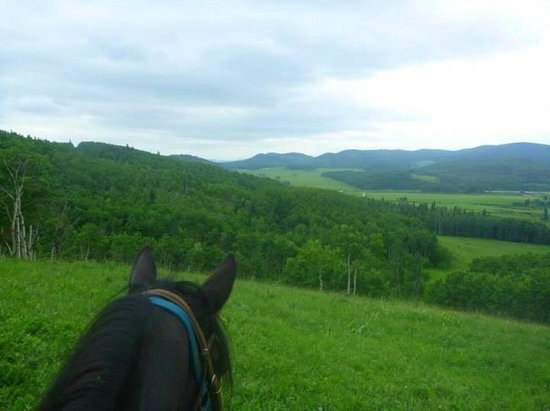 ‪‪Moose Mountain Horseback Adventures - Day Tours‬: Moose Mountain Horseback Adventures‬