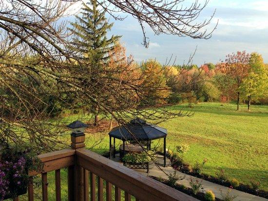 Bella Teresina Inn: View from the Coastal Room.