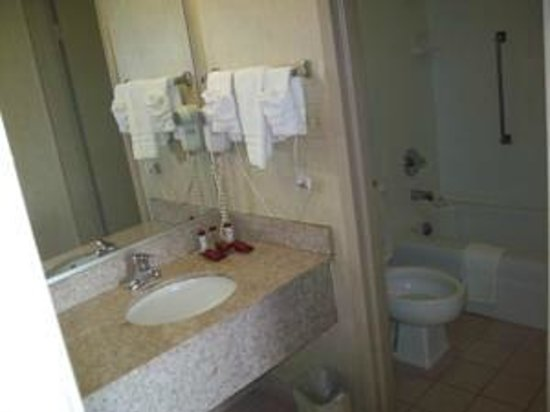 Ramada Harrisonburg: Bath area