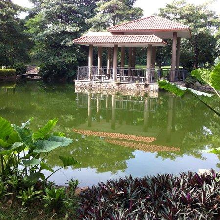 Royal Garden Hotel: part of a Spacious Garden