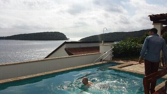 Apartments Becir: pool view