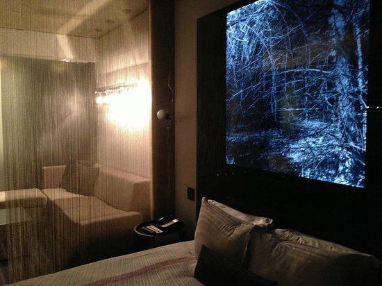 SIXTY LES: Snazzy suite - my son thought the photo was a little too Blair Witch