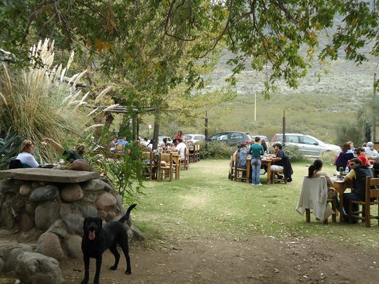 El Coiron - Almacen de Delicias: Como el jardín de casa