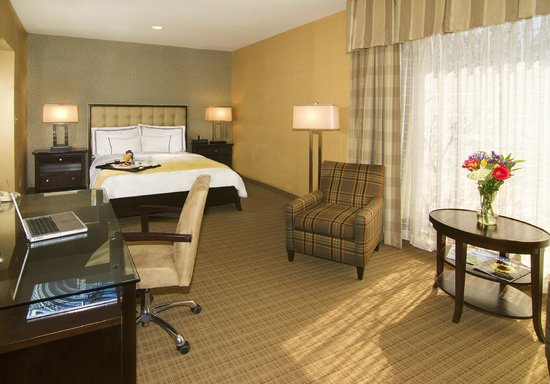 Radisson Hotel Valley Forge: Business Class Suite