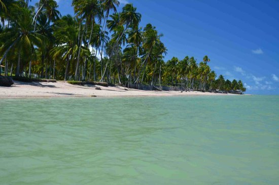 Praia do Patacho: Paraiso!