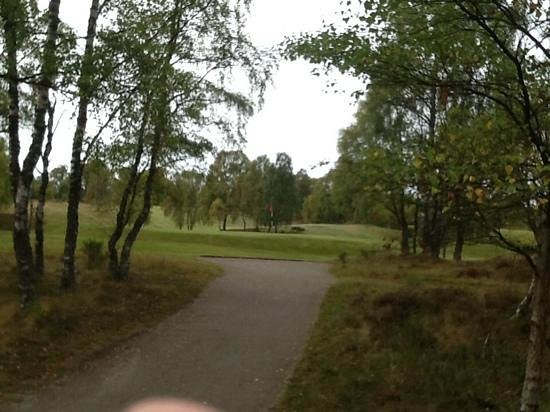Boat of Garten Golf Club: View of 14th green from path leading to 15th tee