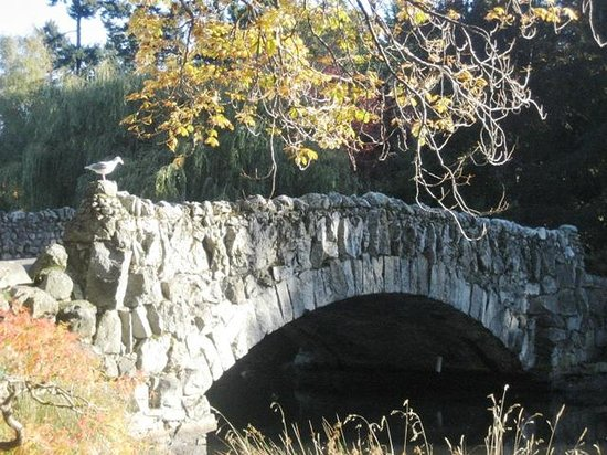 Abbeymoore Manor Bed and Breakfast Inn: Old stone bridge a short stroll away