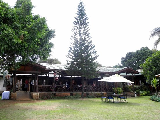 Aero Club of East Africa: nice garden and outdoor seating. the main restaurant has a roof but is also open air