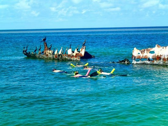 Mellow Ventures: Snorkeling shipwreck