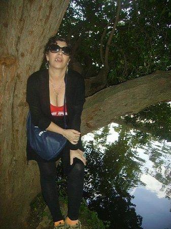 Carmen de los Martires: el lago del Carmen, y un árbol que te acoge justito para hacerte una foto con un fondo hermoso