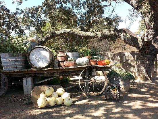 Sunstone Vineyards & Winery: Entrance