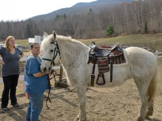 Danby, VT: Gypsy, Horse I bought from Mountain Veiw Ranch in 2012
