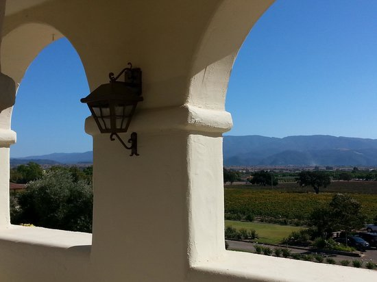 Bridlewood Estate Winery: View from front deck