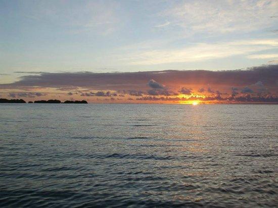 Pines and Palms Resort: Sunrise from resort