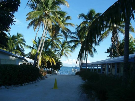 Pines and Palms Resort: Road to boat launch